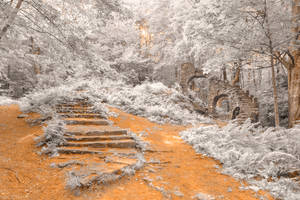 Forest Castle Ruins - Frosted Fantasy by boldfrontiers