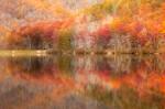 Sherando Pastel Lake