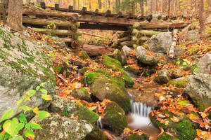 Autumn Logging Railroad Stream by boldfrontiers