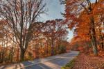 Autumn Blue Ridge Park Rays