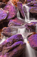 Ultraviolet Moss Falls by boldfrontiers