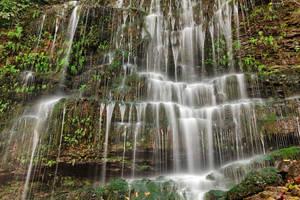 Moss Wall Waterfall