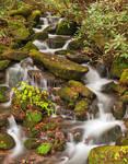 Smoky Mountain Moss Waterfall by boldfrontiers