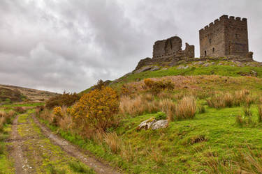 Dolwyddelan Castle Path by boldfrontiers