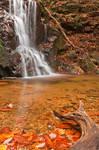 Avalon Hook Falls