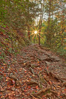Smoky Mountain Sunburst Trail by boldfrontiers