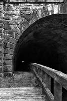 Paw Paw Grunge Tunnel by boldfrontiers