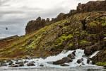 Rugged Iceland Moss Stream (freebie)