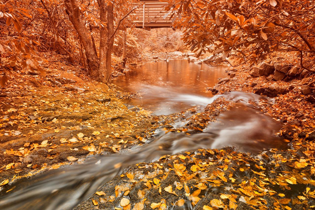 Hawk Run Autumn Fantasy by boldfrontiers