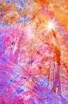 Acrylic Sunburst Forest - Dunkeld