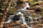 Autumn Garden Creek Falls