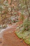Winding Snow Dust Trail