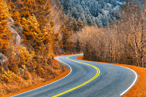 Burning Frost Road by boldfrontiers
