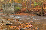 Rustic Fall Creek