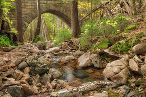 Acadia Carriage Bridge Stream by boldfrontiers