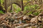 Acadia Carriage Bridge Stream