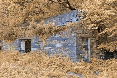 Blueberry Cream Ruins