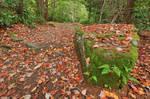 Autumn Moss Boulder Trail