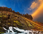 Rugged Iceland Moss Sunset