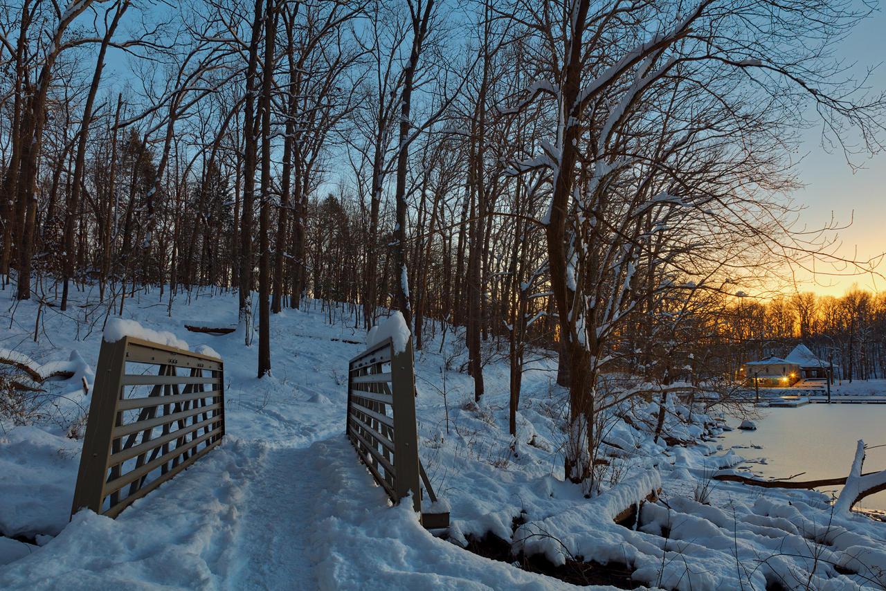 Winter Twilight Trail Bridge - Lake Needwood