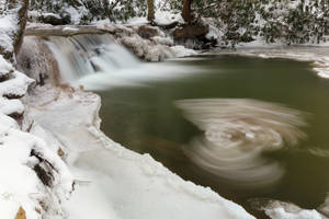 Winter Wings Stream by boldfrontiers