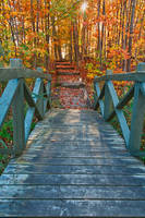 Bridge to Fall by boldfrontiers
