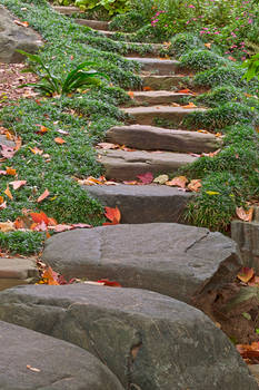 Arboretum Stepping Stones by boldfrontiers