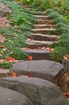 Arboretum Stepping Stones