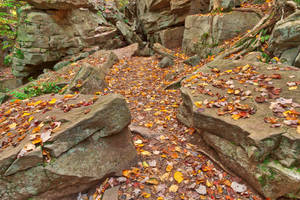 Autumn Midway Crevasse by boldfrontiers