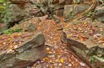 Autumn Midway Crevasse