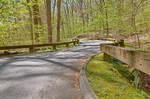 Rock Creek Forest Road