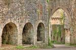 Gwrych Castle Arches