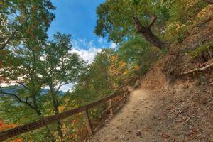 Seneca Rocks Tilt Trail by boldfrontiers
