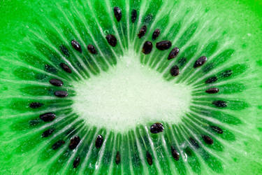 Green Kiwi Slice by boldfrontiers
