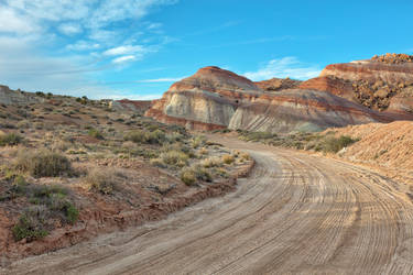 Winding Dirt Road - Cathedral Valley