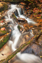Hammer Branch Autumn Stream by boldfrontiers