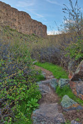 Box Canyon Spring Trail (freebie) by boldfrontiers