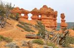 Red Canyon Hoodoo Hike