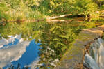 Shelving Rock Reflections (freebie)