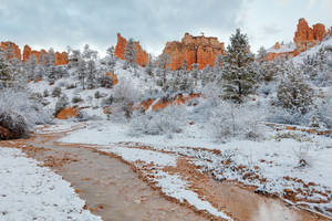 Bryce Canyon Winter Stream by boldfrontiers