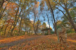 Autumn Megalith Forest Trail