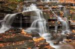 Autumn Garden Creek Cascades