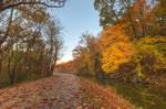 Autumn Anglers Towpath