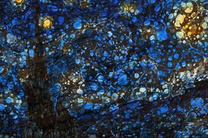 Starry Night Lunacy by boldfrontiers