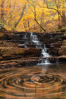 Fenwick Fall Swirls by boldfrontiers