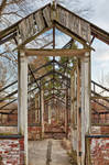 Greenhouse Ruins of Valley Forge