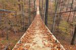 Autumn Suspension Bridge - Tims Ford
