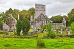 Muckross Abbey (freebie) by boldfrontiers