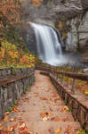 Autumn Steps of Looking Glass Falls