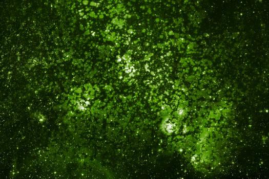 Green Lichen Space
